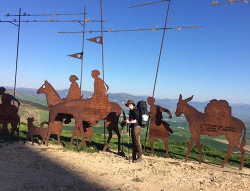 Brauring gik 800 km på Caminoen